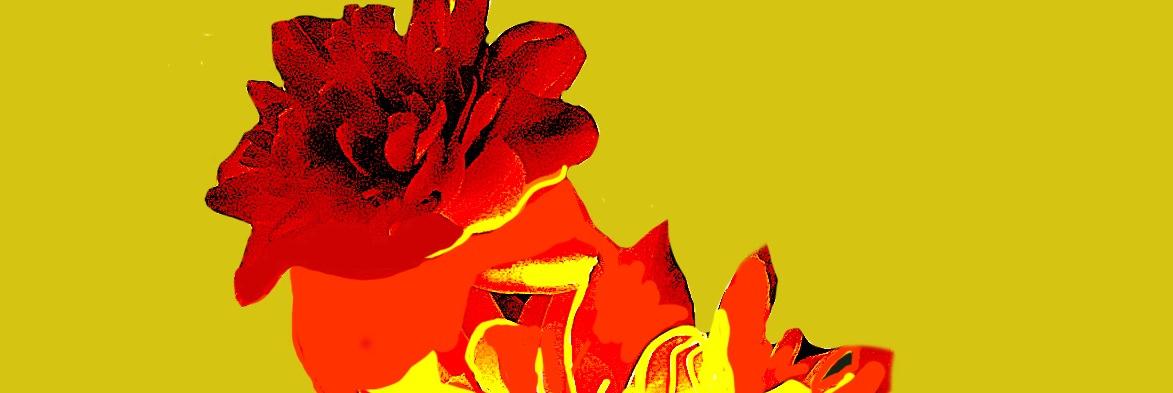 Flores130518_Final13_1recorte2