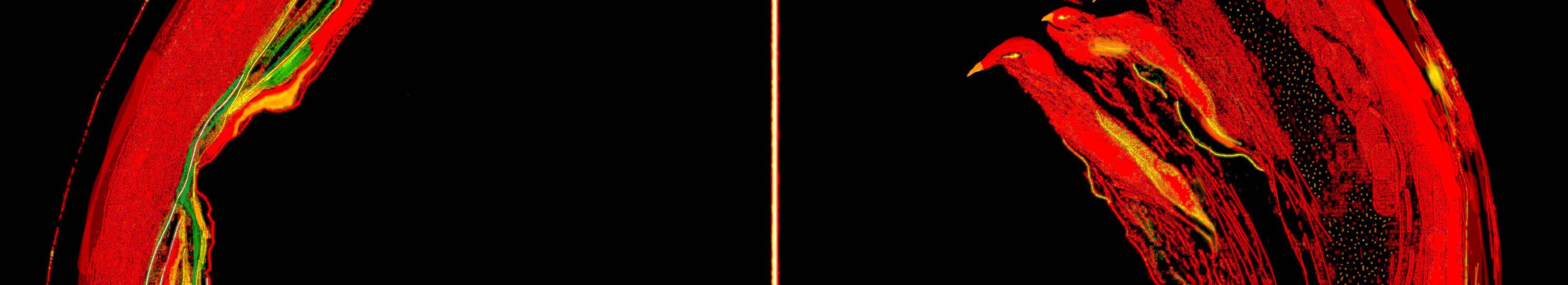 Combustão030520_FimRec
